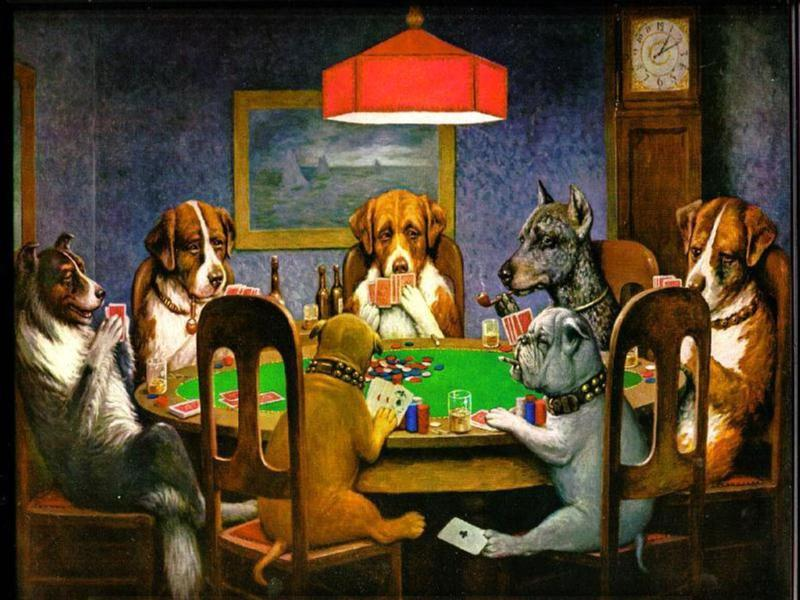 Gambling dogs