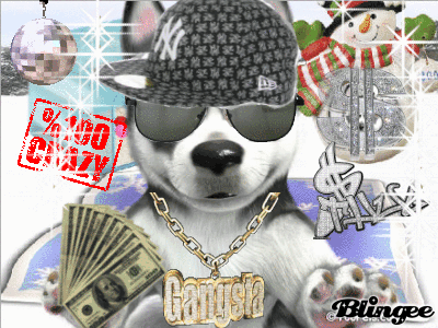 Gangsta dog