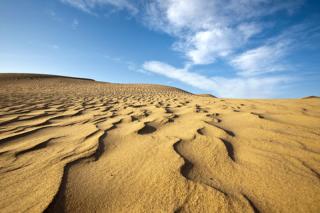 Shifting sands of Springer