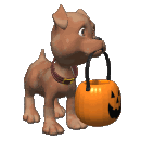 Dog_halloween_pail_look_md_clr
