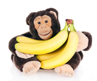 A fistful of bananas