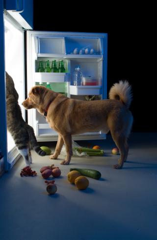 Opening the door bears fruit